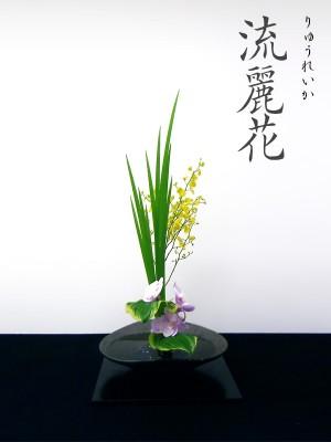 流麗花(りゅうれいか)|松月堂古流