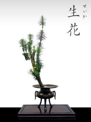 生花(せいか)|松月堂古流